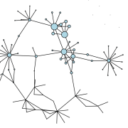 Network web diagram representing the change influence/connectivity after the faculty fellows program started.