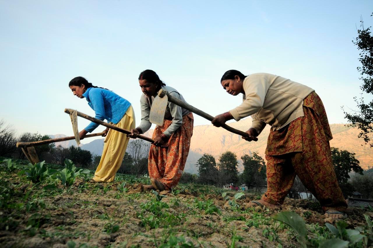 Female Indian farmers