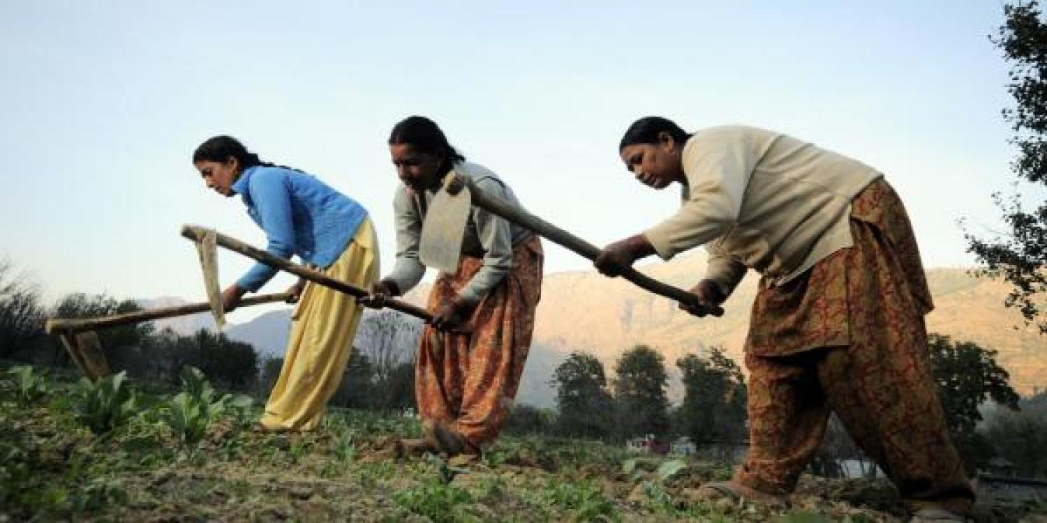 Female Indian farmers
