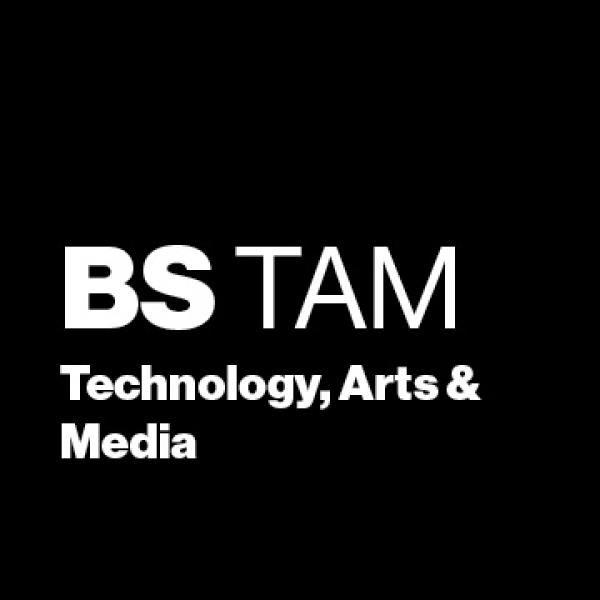 BS TAM: Technology, Arts & Media
