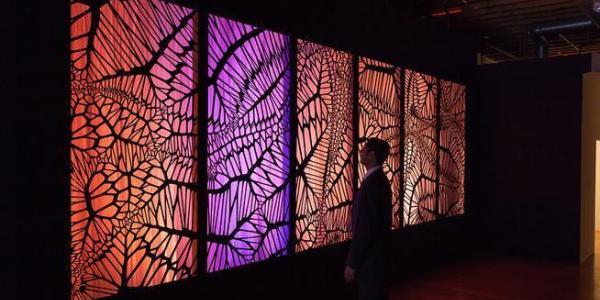 Photo of Theodore's art machine exhibit