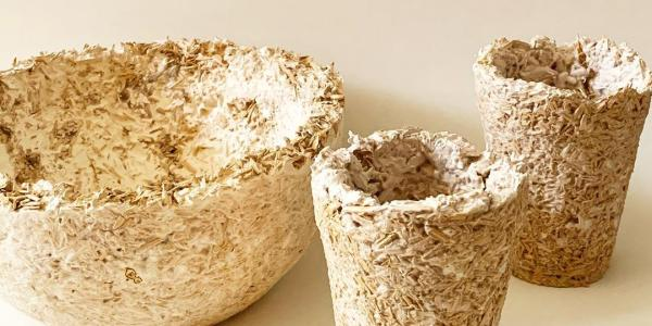 A bowl and two flower vases made from mycelium.