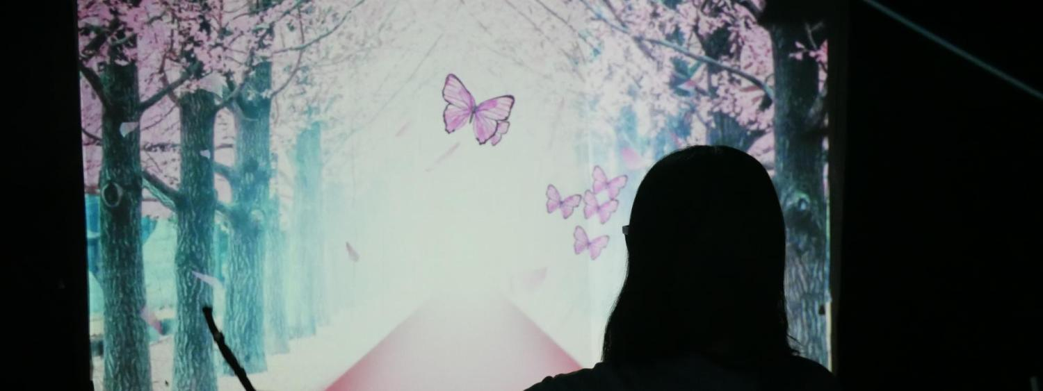 Silhouette of a woman in front of an image of a butterfly.