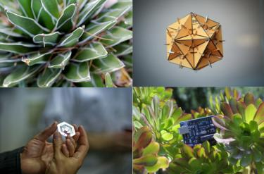 Photos of electronics in nature
