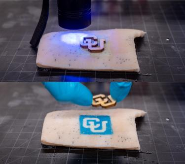 Before and after exposing a CU logo on pig skin.