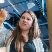 fiona bell peels bioplastic from window