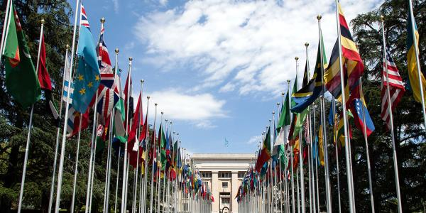 United Nations Flags in a row