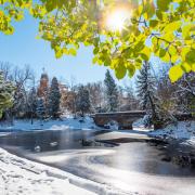 Photo of Campus In Snow