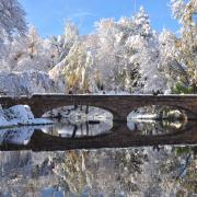 Winter view of CU Varsity pond