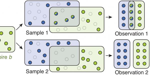 Stochastic sampling leads to variation in observed overlap.