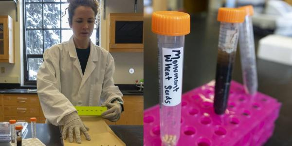 "CORINNE WALSH SETS UP AN EXPERIMENT TO  EXPLORE THE RELATIONSHIP BETWEEN MICROBES AND WHEAT PRODUCTION (L PANEL). THE THREE VIALS CONTAIN A DRY DIRT SAMPLE, A DIRT SAMPLE MIXED WITH WATER, AND THE WHEAT SEEDS THAT WALSH THEN APPLIES THE WET DIRT ""SLURRY"" TO (R PANEL)."