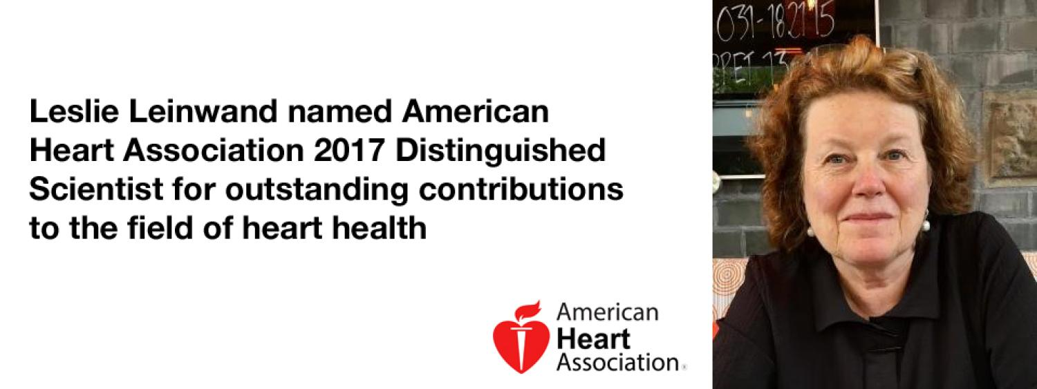 Leslie Leinwand has won the American Heart Association's 2017 Distinguished Scientist award for outstanding contributions to the field of heart health