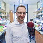 Assistant Professor in Molecular, Cellular and Developmental Biology, Joel Kralj, a BioFrontiers Institute faculty member, became interested in measuring cellular voltage as a postdoctoral researcher.