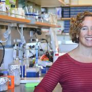 BioFrontiers' Amy Palmer studies the effects that zinc has on a wide variety of cellular processes.