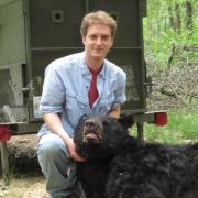 Ryan tends to a tranquilized bear during field work in Missouri.