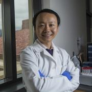 BioFrontiers Hubert Yin is focused on toll-like receptors that may play a role in new cancer therapies.
