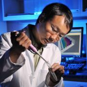 Biofrontiers scientist, Hubert Yin, is using fluorescent biomarkers to develop a better screening method for cancer.
