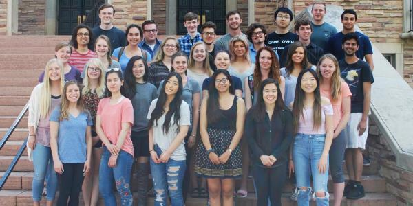 BSI Scholars Program