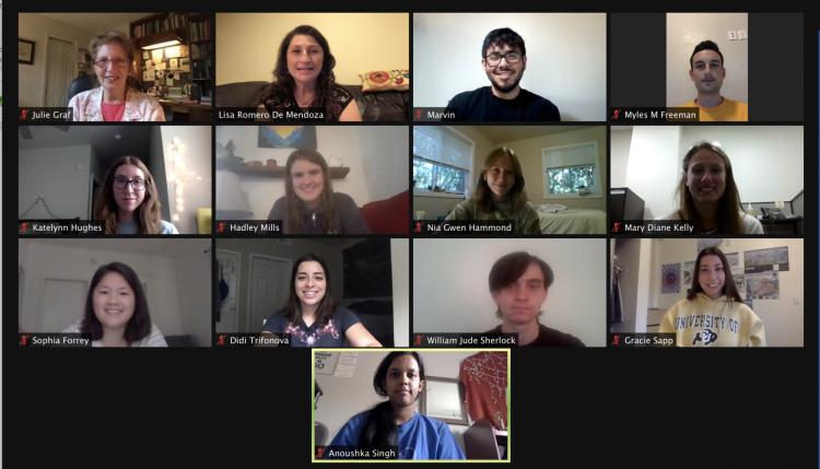 BSI Scholars Orientation group photo over Zoom
