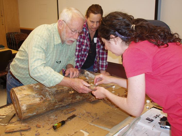 A workshop instructor shows participants pine beetle damage