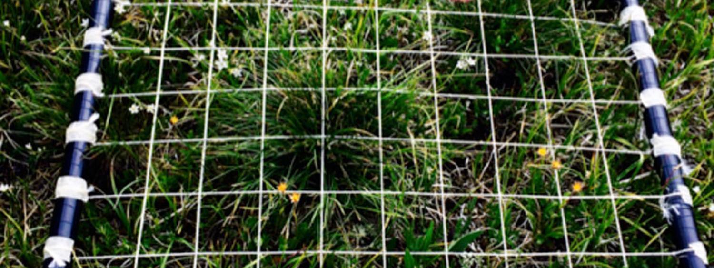 Field Grid