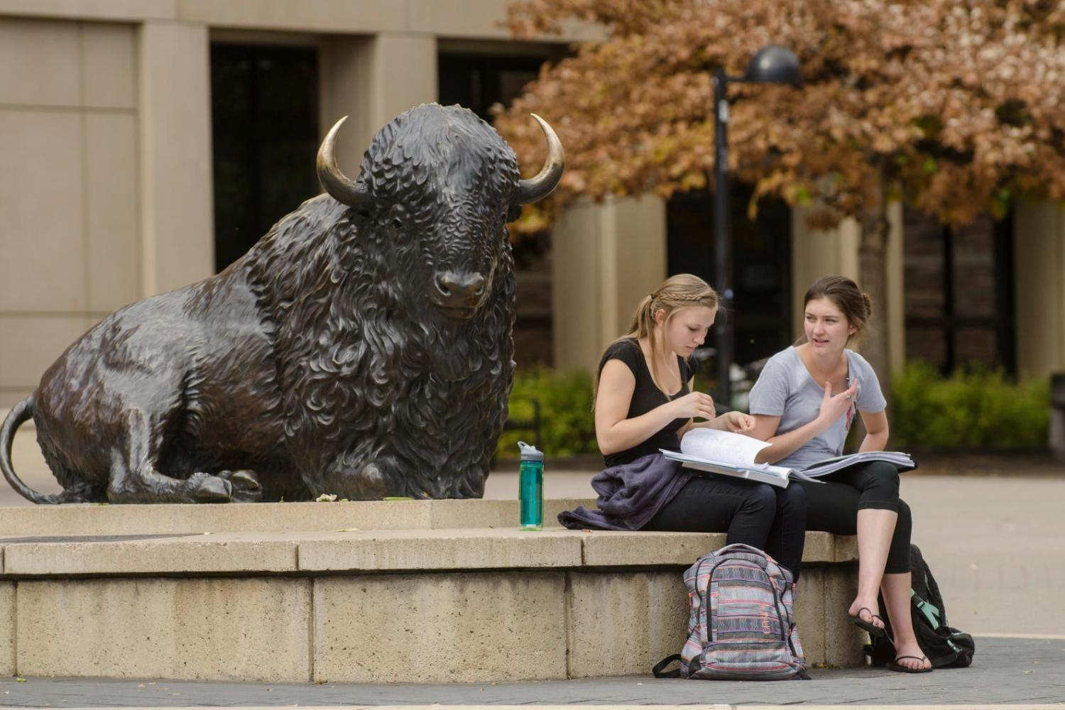 Two female students studying by the buffalo statue.