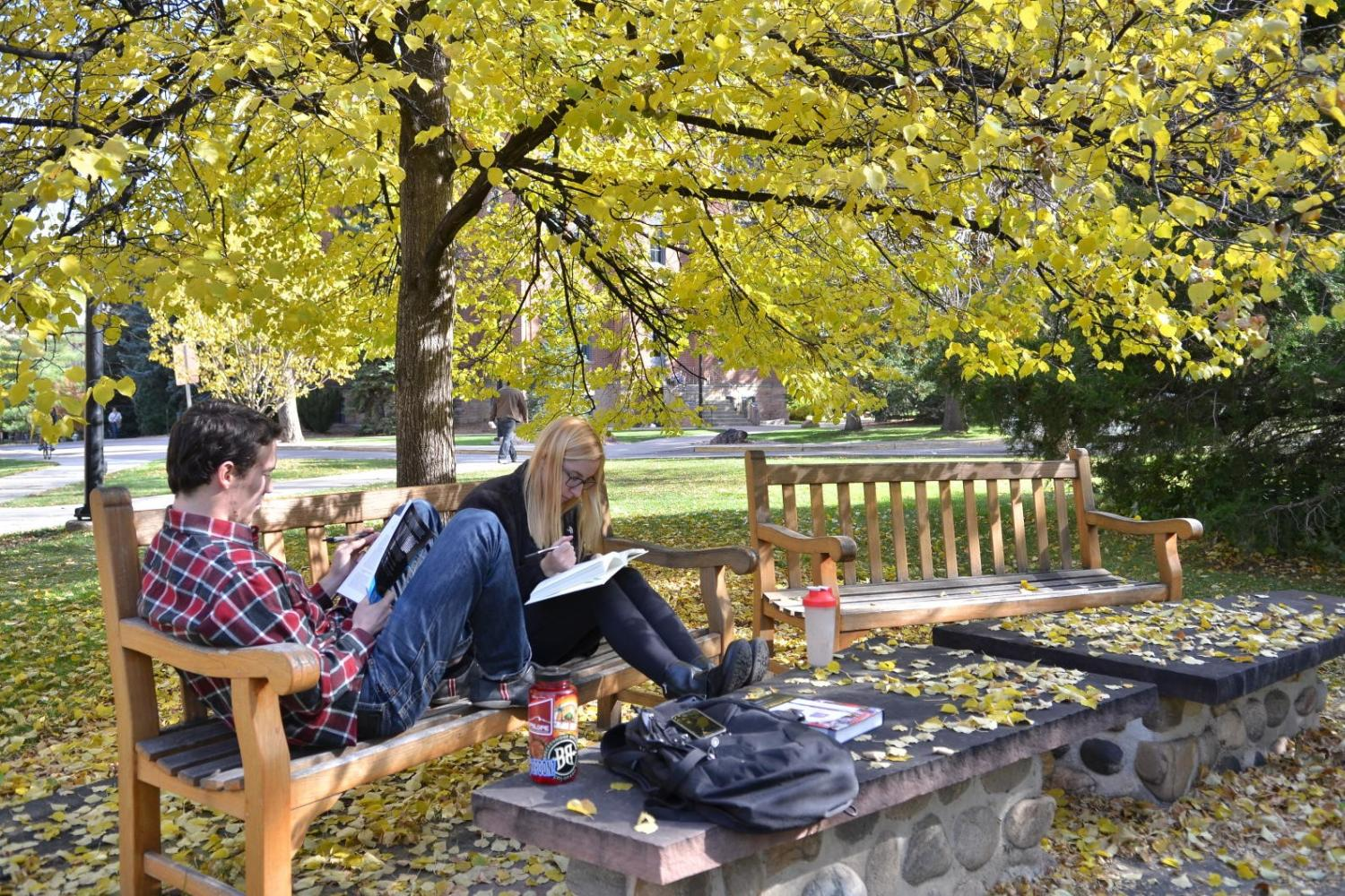 Two students studying outside on a bench.