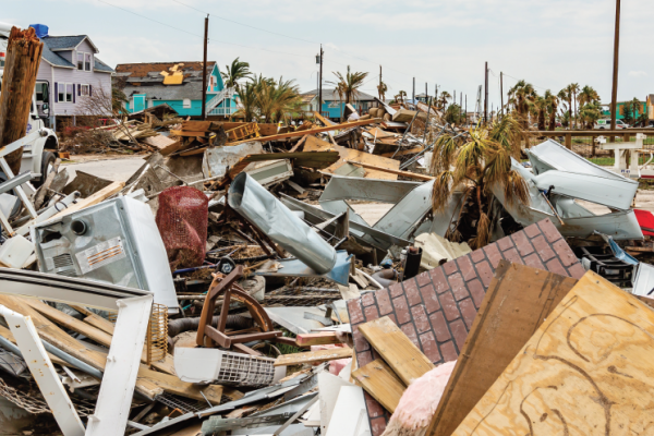 The Winners and Losers of a Natural Disaster