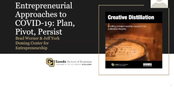 Entrepreneurial Approaches to COVID 19: Plan, Pivot, and Persist