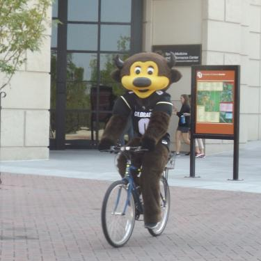 Chip bike
