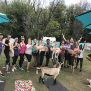"""The group and a few """"cooperative"""" goats"""