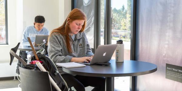 student studying with a laptop
