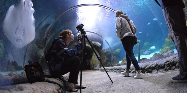 Research workshop. Student with camera in aquarium.