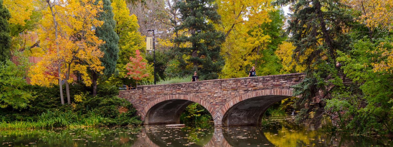 Bridge on campus