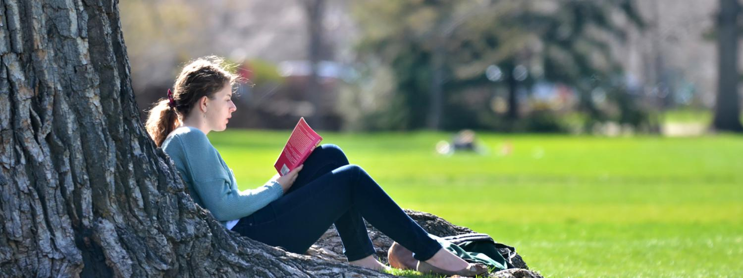 Student reading a book under a tree on campus