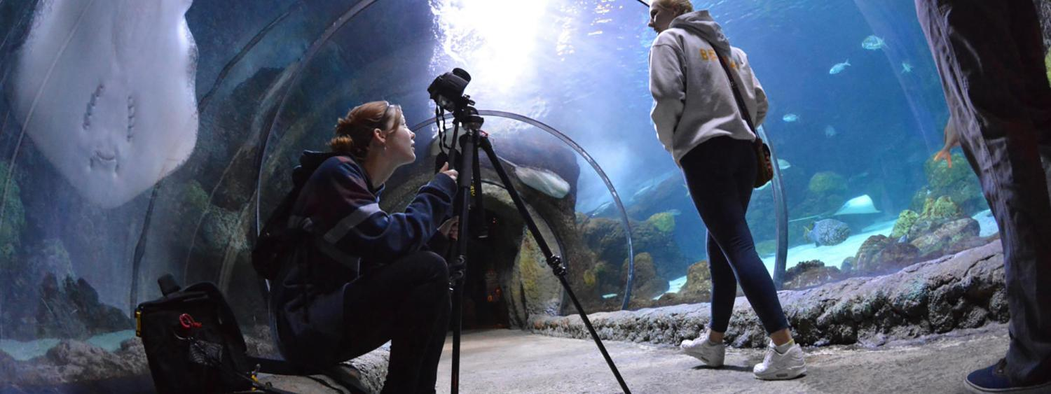 Student taking photos in an aquarium