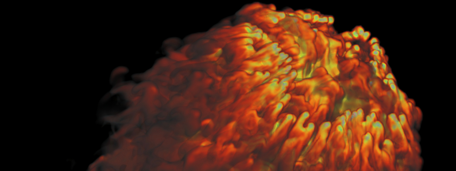 Supernova Blast Wave Simulation