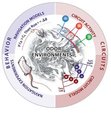Odor Navigation Logo