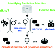 A graphic flow chart showing the system for priority decision-making.