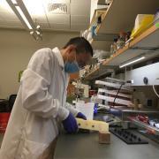 Post-Doc Zhanan Zou demolding biological building material