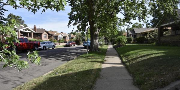 Sidewalk in a neighborhood.