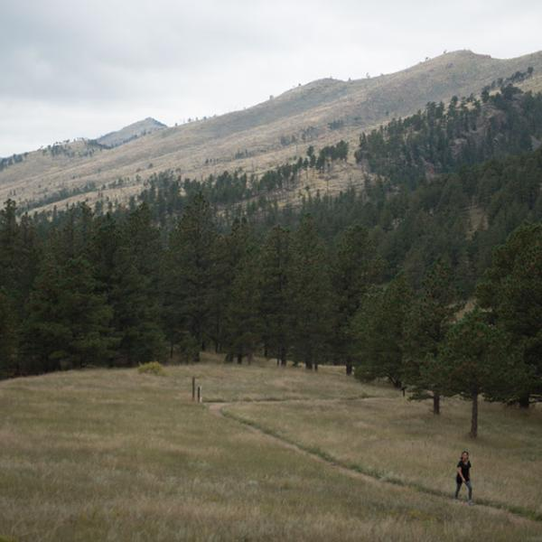 Meadow view with mountains in the background and a hiker on a trail