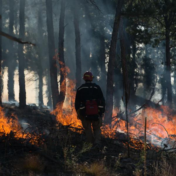 Two pokets of flames burn during the Heil Ranch controlled fire