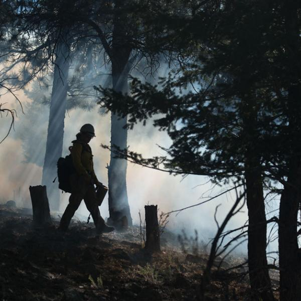 A fireman walks at the edge of controlled fire, through smoke