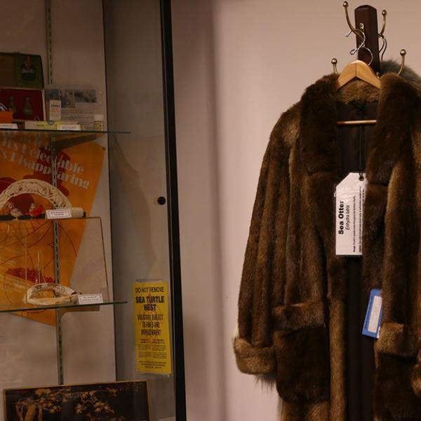 Fur coats made from endangered species that were confiscated by agents with the U.S. Fish and Wildlife Service are on display at the repository.