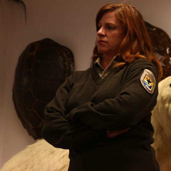 Coleen Schaefer runs the U.S.F.W.S. Wildlife Property Repository.