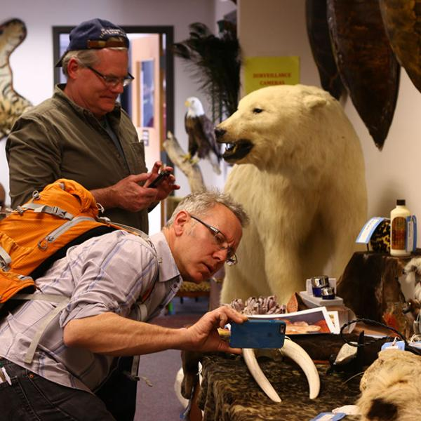 Michael Kodas, Deputy Director of the Center for Environmental Journalism, takes a photo in the U.S.F.W.S. Wildlife Product Repository while Scott Wallace, a Ted Scripps Fellow in Environmental Journalism documents the scene in the background.