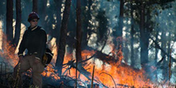 Man observing the burn