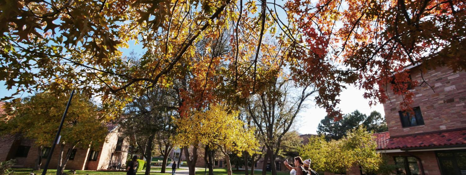 CU Fall Colors