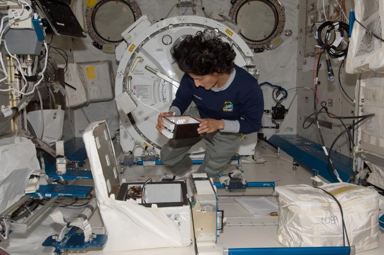 NASA astronaut Sunita Williams manipulating CGBA hardware during the YouTube Space Lab experiment